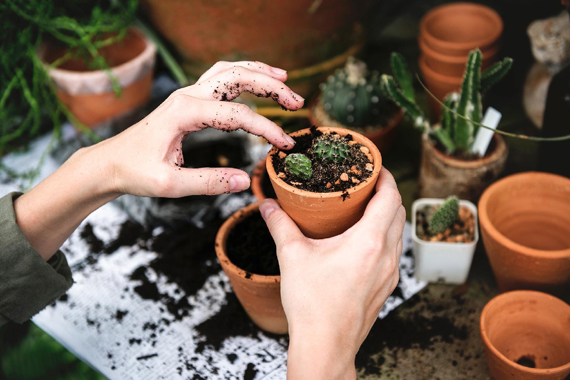 corso giardinaggio
