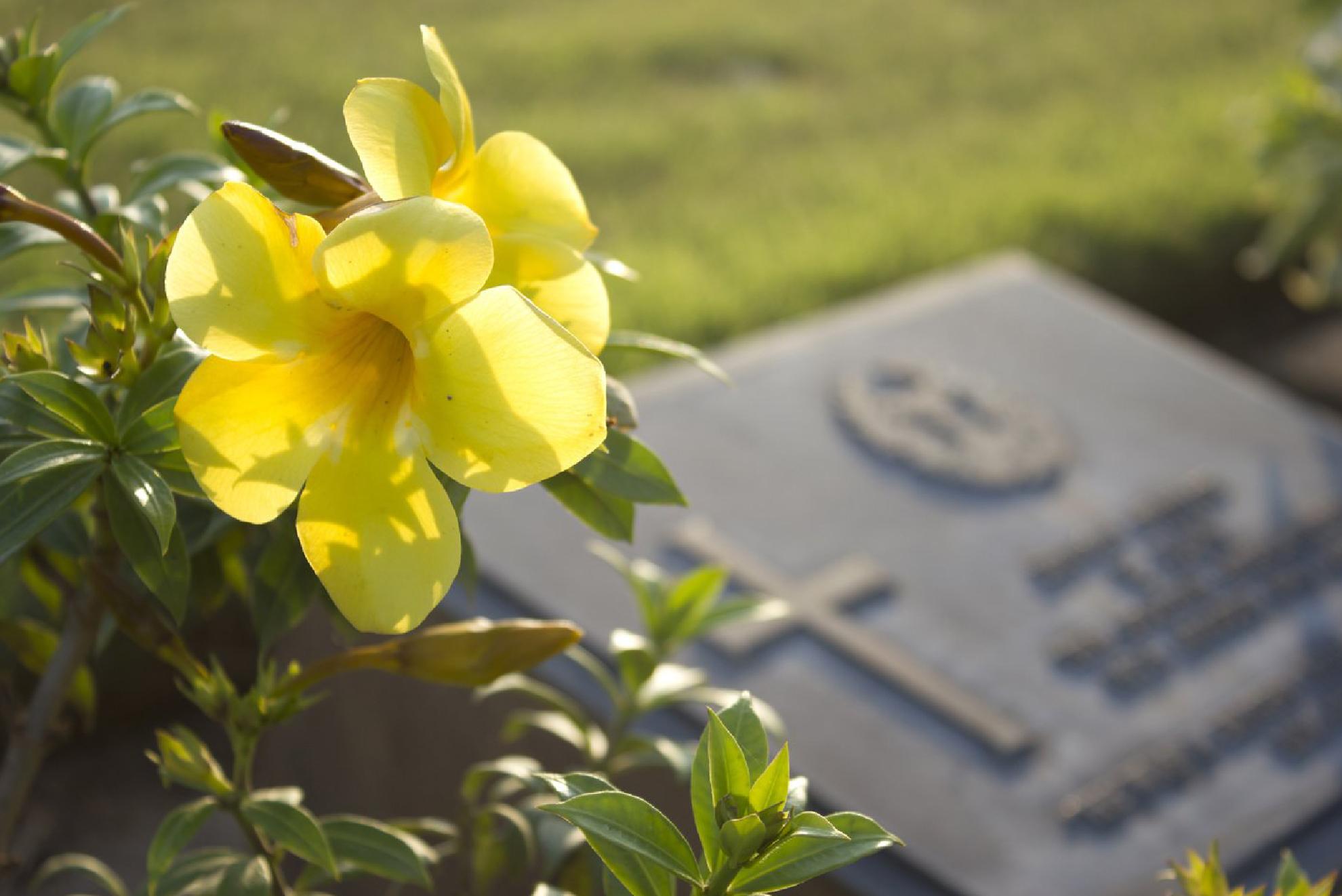corso operatore funebre