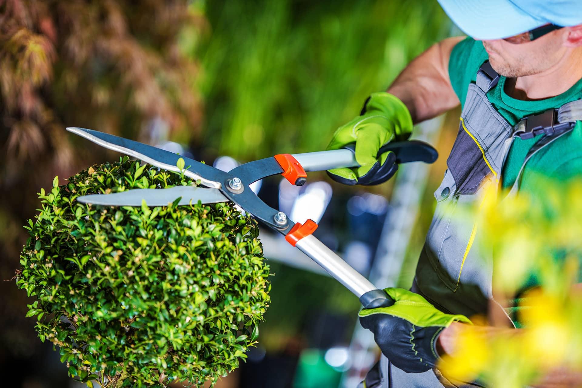 corso manutentore del verde